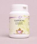 Guduchi – Holistic668