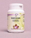 Shatavari – Holistic683